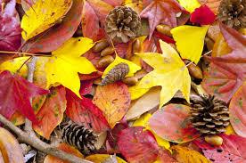 今年の秋は運動の秋?運動と美肌の関係