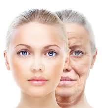 肌老化の原因は○○にあり!!