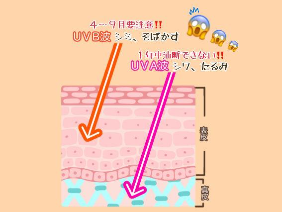 紫外線量グラフ