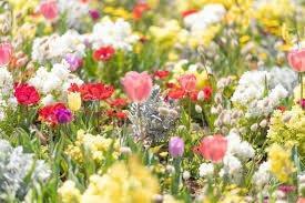 春にシミが濃くなる理由