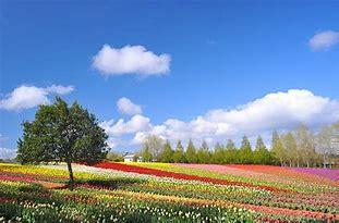4月【春肌】のトラブル傾向
